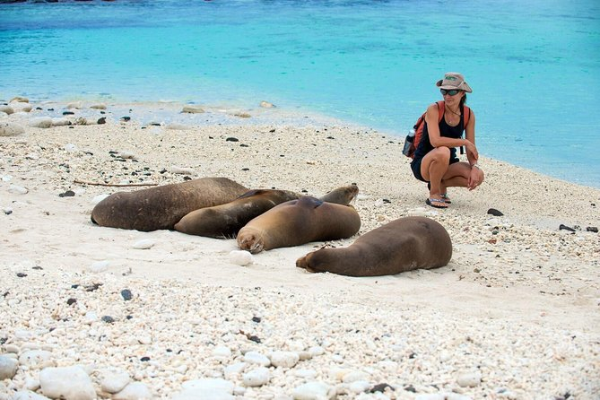 4 Day San Cristobal Expedition (Tourist Superior Class)