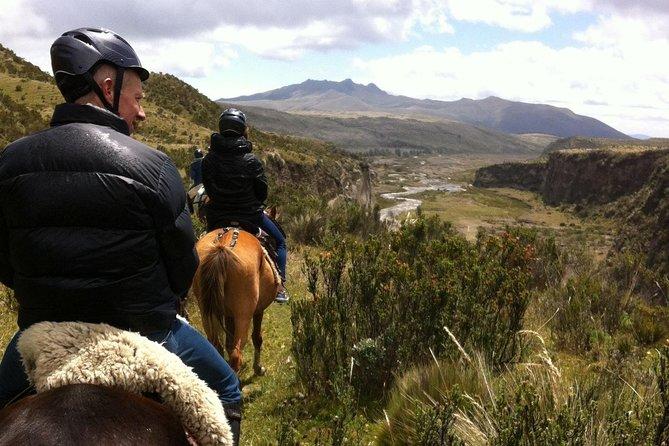 火山の洞窟一夜乗馬ツアー