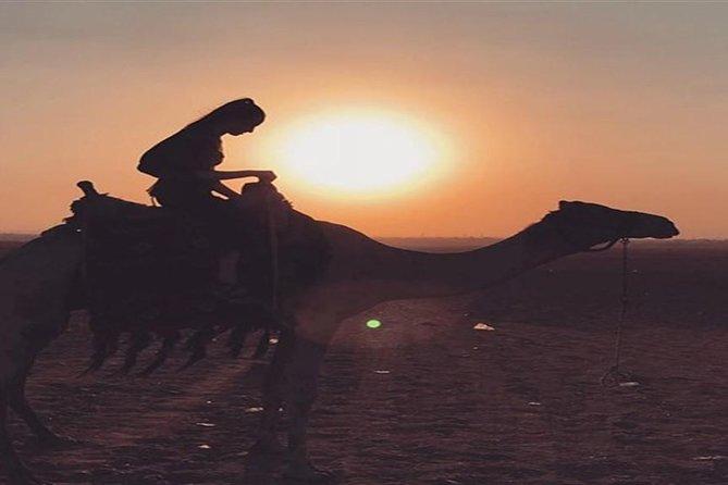 Giza Pyramids-Camel ride-Trip during Sunrise or sunset