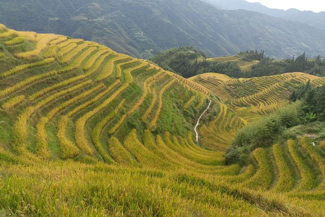 Longji Rice Terraces Day Tour from Xingping hotel photo 8