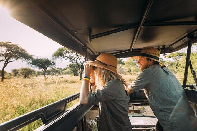 8 Days (7 Nights) Classic Holiday Luxury Safari in Tanzania