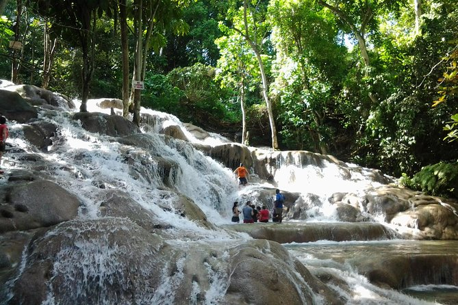 Dunn's River Falls excursion from Montego Bay