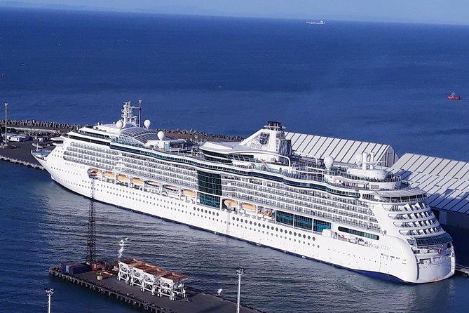 Napier Deco, Town & Country Cruise Ship Excursion