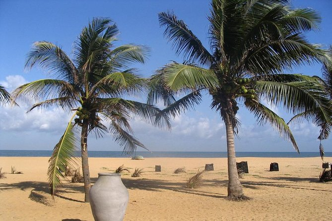 Shore Excursion from Colombo port to Negombo Beach & back for 7 to12 People