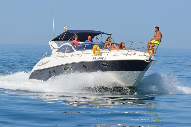 Private Yacht Hire - Dolphin Watching