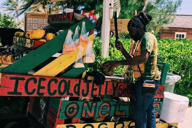 Negril sightseeing and shopping shore excursion