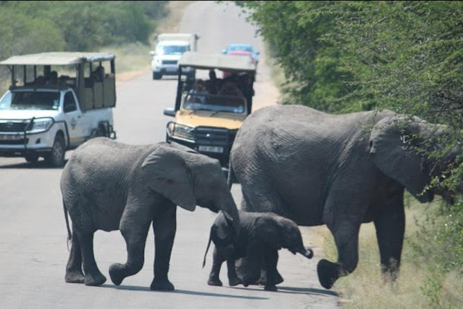 Johannesburg History Tour and Kruger National Park Safari 5 Days R24 000 Package