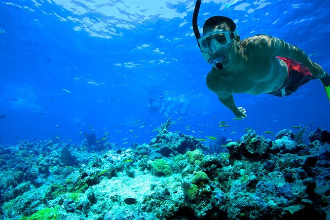 Key West Tour With Snorkeling And