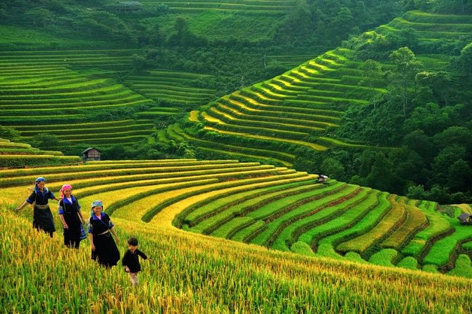3-Night Sapa Trek and Homestay with Round Trip Transfer from Hanoi