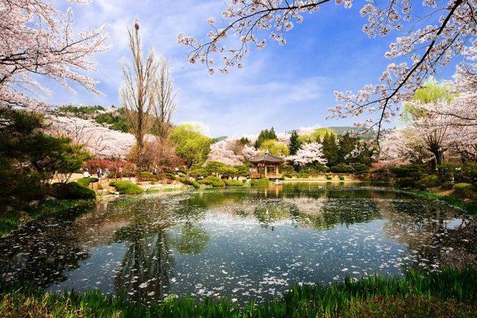 Customizable 3 day Private tour : Busan, Gyeongju and Ulsan Highlights