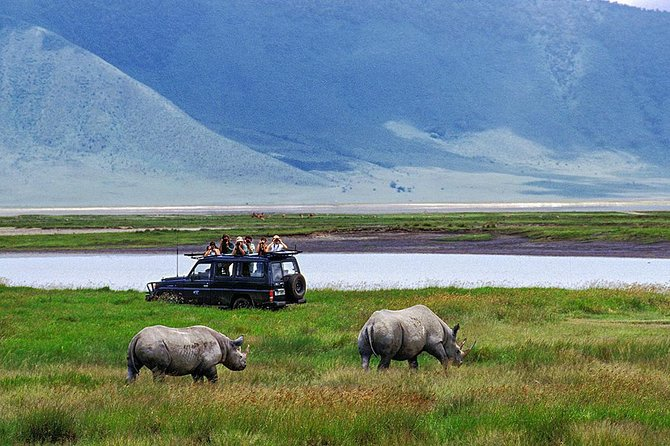 1 Day Private Safari in Ngorongoro Crater National park