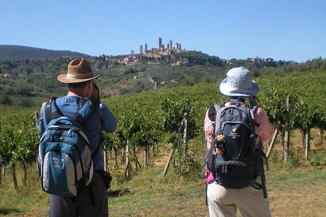 Via Francigena 1 Day Walking Tour - Sant'antimo