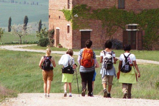 Via Francigena 1 Day Walking Tour - Sant'antimo