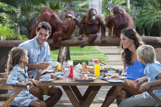 The Best Trip Breakfast With Orangutan With Free Hotel Shuttle