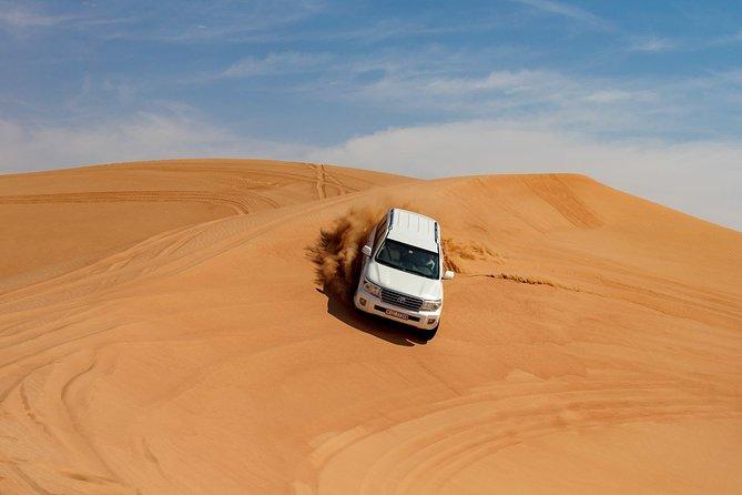 Dubai Morning Safari With Camel Trek