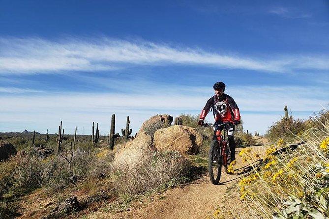 Half-Day Private Sonoran Desert Mountain Bike Tour | Meet at Trailhead