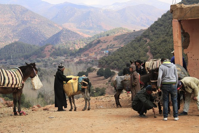 Active Atlas Experience/Private Day Trip & Excursion in Mountains from Marrakech