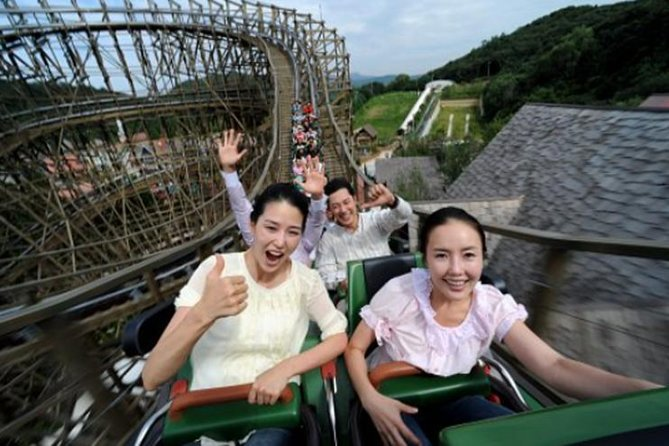 Private Everland Theme Park tour(tour guide not included)
