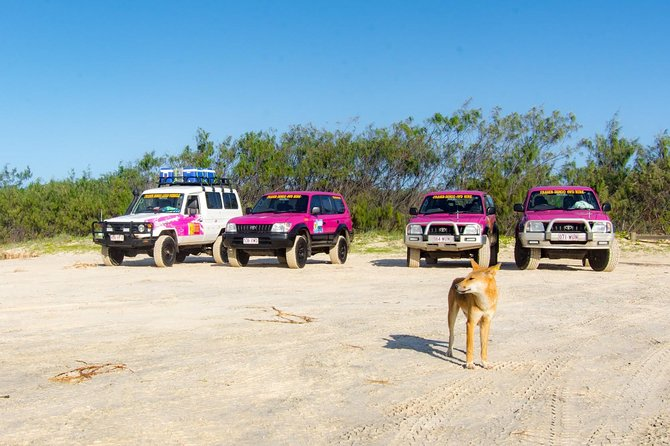 3 Day 4wd Tagalong Tour - Fraser Island