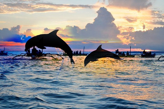 Bali Dolphin Watching Sunrise Tour in Lovina Beach