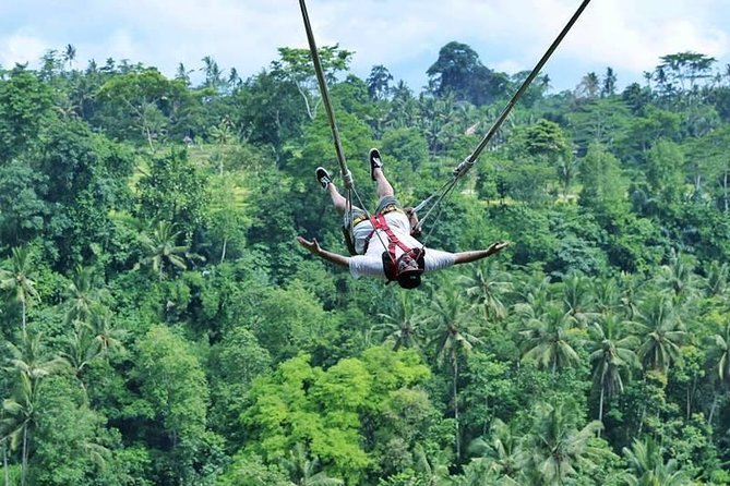 Full Day Bali Swing with Ubud and Waterfall Tour