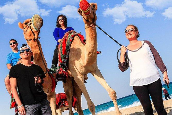 Camel Ride Desert Safari Tour from Doha