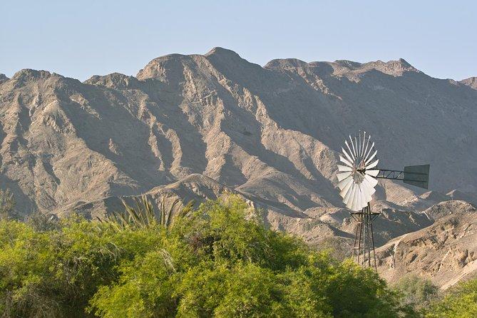Pelgrim Tours - Moon Landscape & Welwitschia Mirabilis Tour