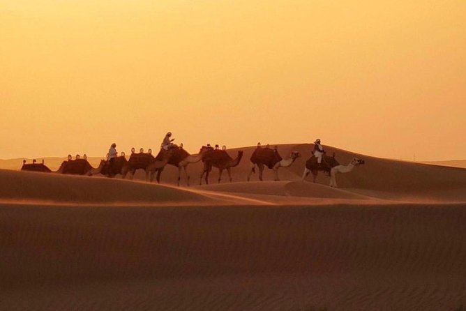 Dubai Evening 4x4 Desert Safari with BBQ, Sandboarding & Camel Ride photo 2