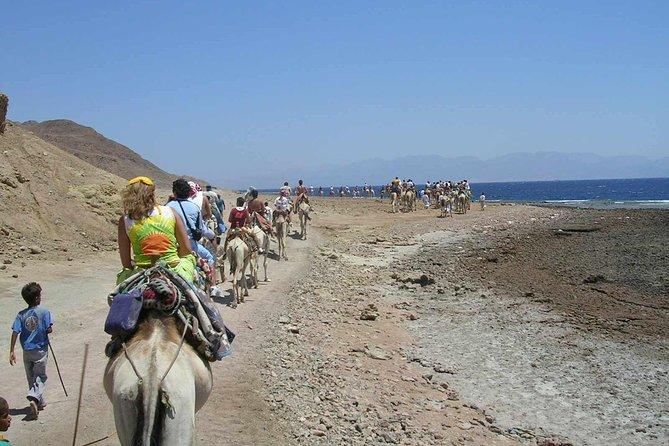 Jeep Safari Blue &Dahab &Camel Riding & Lunch & Snorkling