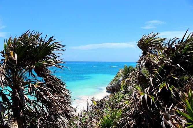 Tulum Express Tour photo 25