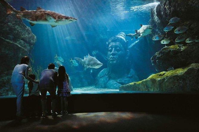 SEA LIFE Bangkok Ocean World mit Klook VIP Lane
