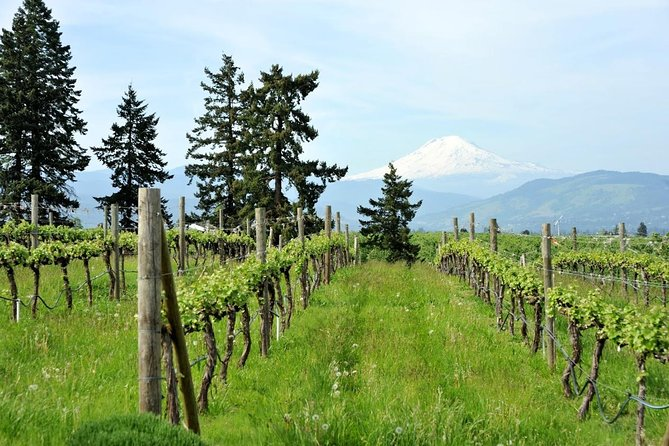 White Salmon Whitewater Rafting, Columbia Gorge, & Wineries Tour from Portland photo 2