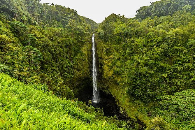 Road To Hana, Private Jeep, Maui Waterfall Hiking Tours