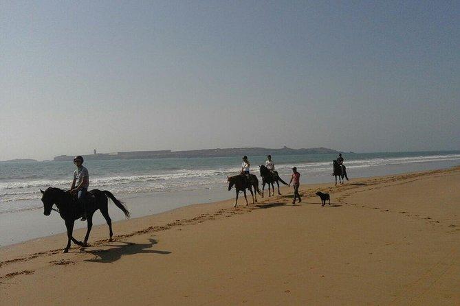 1-houre horse ride