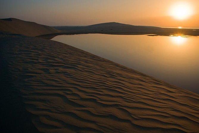 Sunrise Desert Safari with Camel Ride | Dune Bashing | Sand boarding