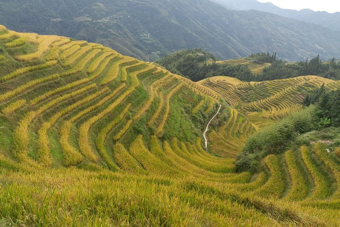 2-Days Longji Rice Terraces and Chengyang Dong Village Private Tour photo 6