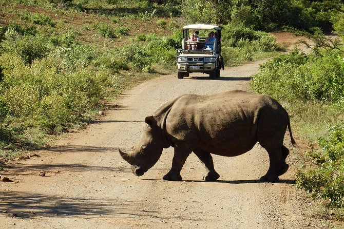 2-Day Wildlife and Safari Small-Group Tour from Cape Town