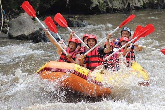 Ayung River - White Water Rafting Bali