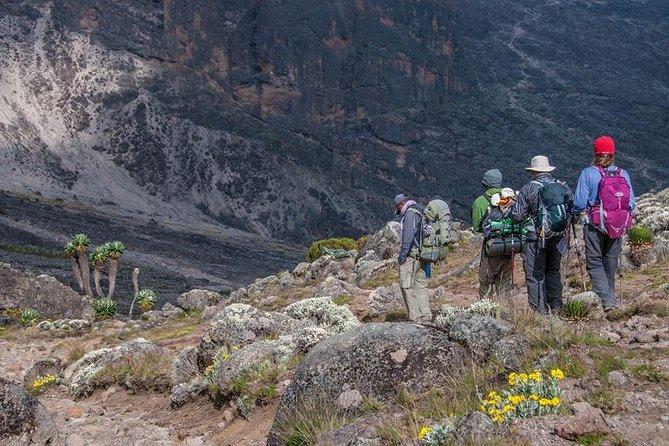 7 Days Kilimanjaro Climb Machame Popular Route
