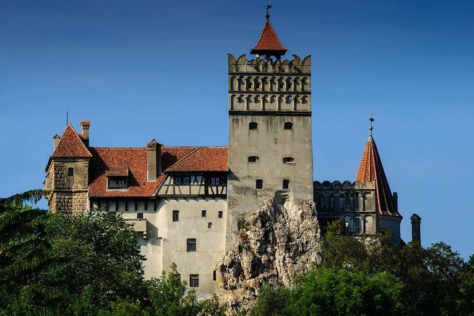 One day trip Bear Sanctuary, Dracula Castle, Rasnov Fortress from Brasov photo 11