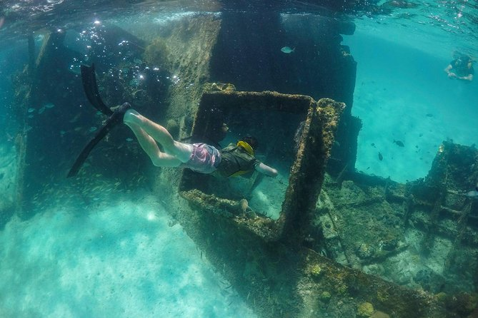 Reef and Shipwreck Snorkeling Tour in Cancun photo 23