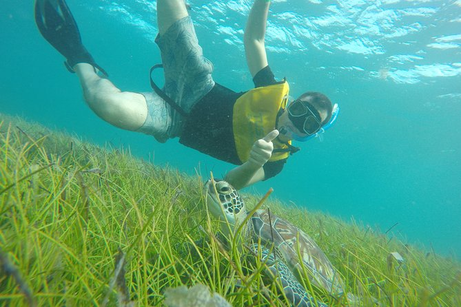Reef and Shipwreck Snorkeling Tour in Cancun photo 19