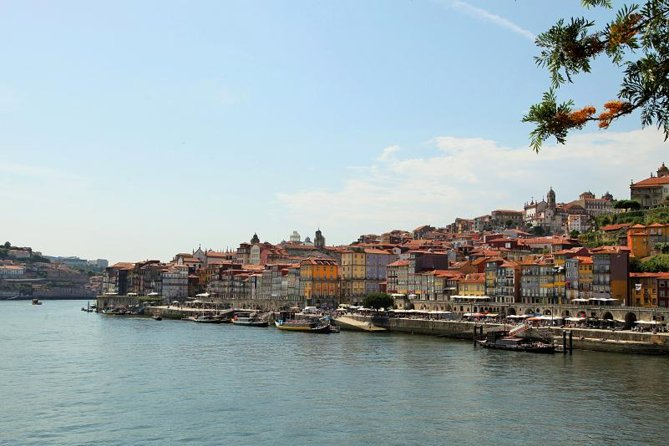 Oporto city private tour with wine tasting in the cellars and cruise
