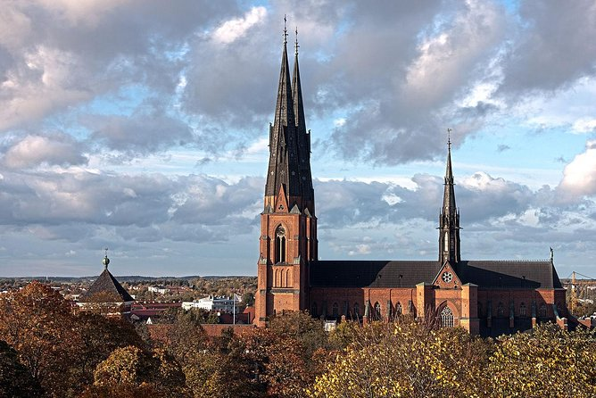 Private Day Tour to Uppsala - Uppsala Cathedral, Viking Burials and countryside