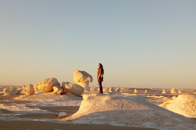 White desert and Bahariya oasis 2 days with camping experience