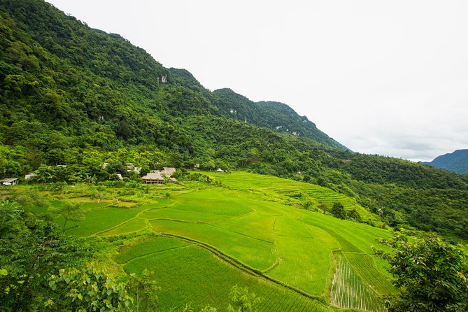 Pu Luong Nature Reserve & Old Capital Ninh Binh Exprience (private 4 Day Tour)