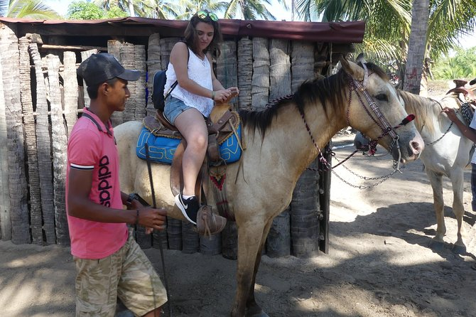 Acapulco Horseback Riding Tour and Baby Turtle Release