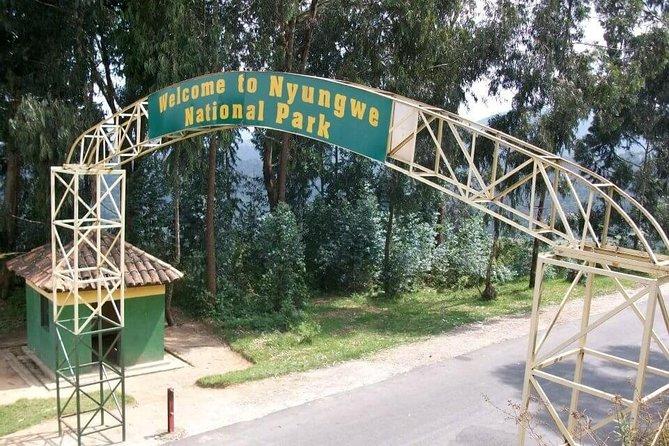 9 Days Programme - Rwanda Tour - (Gorillas and Chimps)