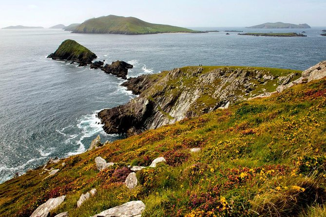 Dingle Peninsula Day Tour from Cork: Including The Wild Altanic Way