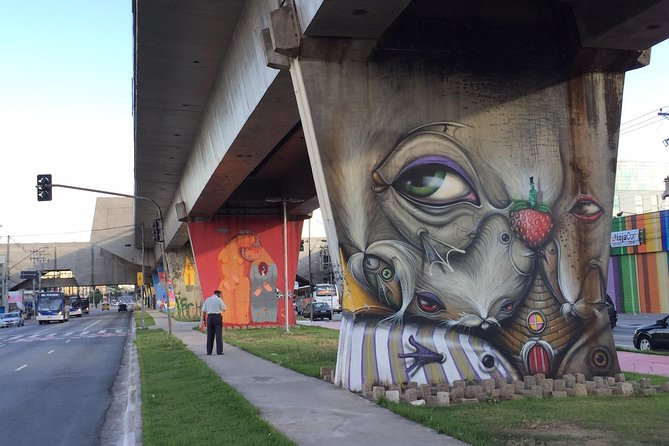 Art & Cultural Tour of São Paulo - Borders of the City